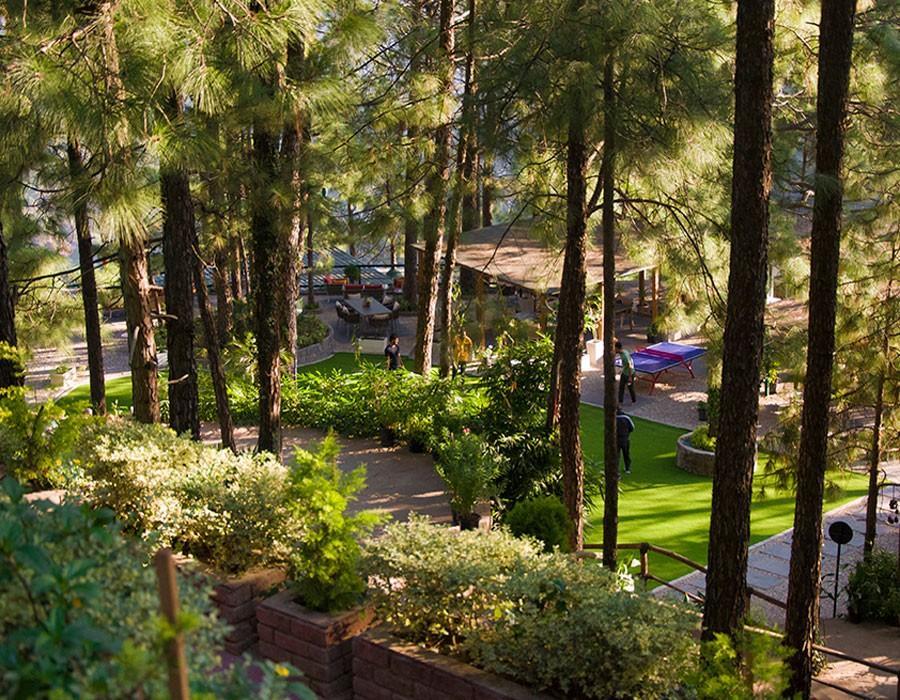 kasauli-hills-resort-cottage-rooms-resorts-hottels-villas-accommodation-valley-views-gaming-activities