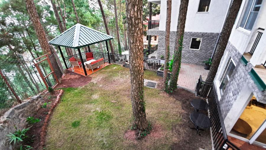 alpviraam-kasauli-solan-himachal-pradesh-accommodation-lawn